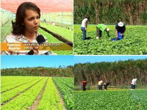 agriculturaorganicadf